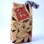 Crazy Cat Bag Fighting Toy